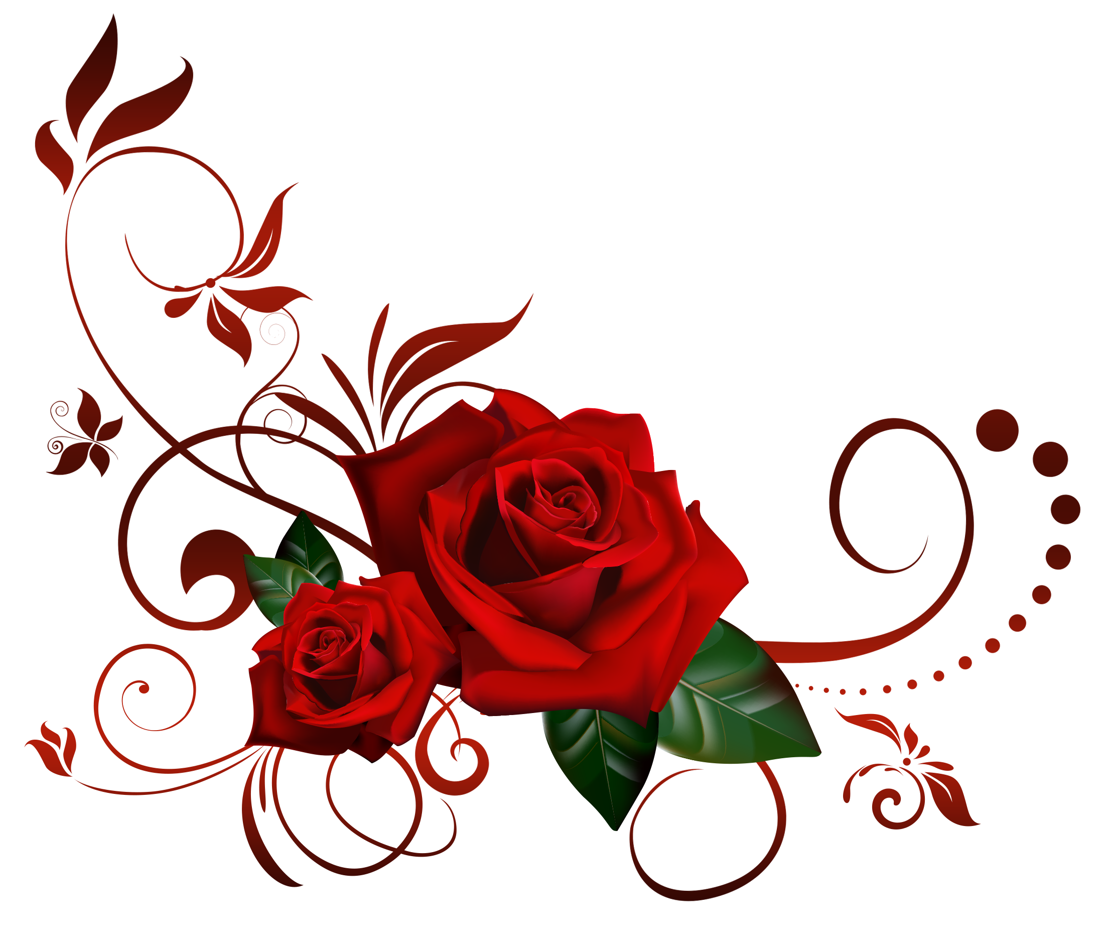 REd Rose PNG Flowers images and Clipart transparent background
