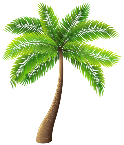 clipart palm tree png free download free palm tree clip art images free christmas palm tree clipart