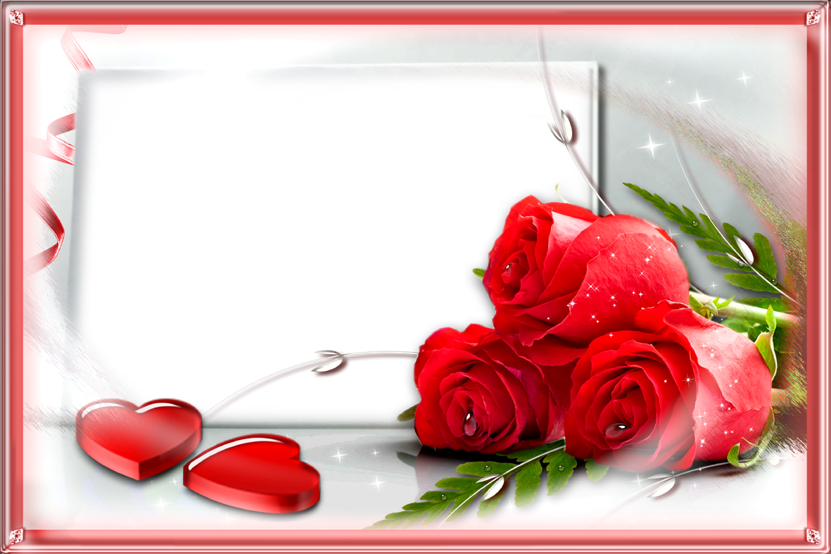 red rose frames png images free download
