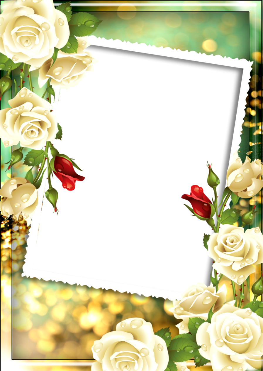 Floral frame png, Floral photo frame png, love and Floral pds frame ...